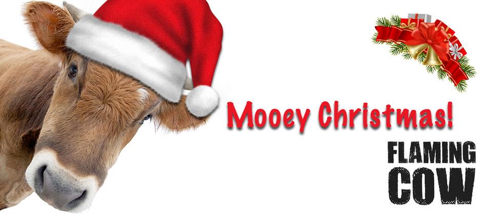 Flaming Cow Christmas blog post image